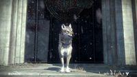 Destiny-ROI-Wolf-Ingame-04.jpg