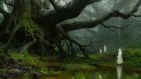 Awokenforest.jpeg